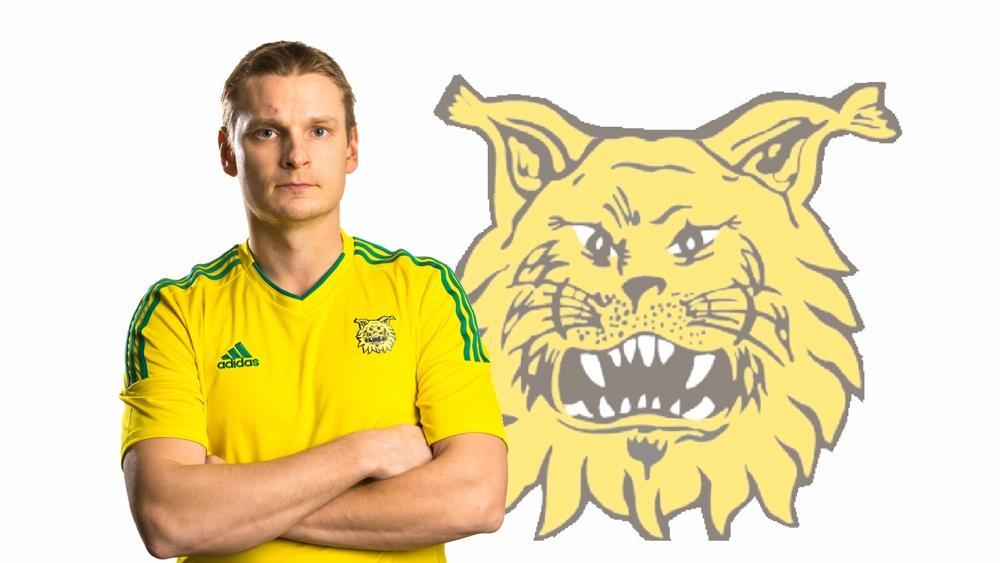 Heikki Aho