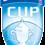 Ilves kohtaa Suomen Cupin seuraavalla kierroksella FC Hongan